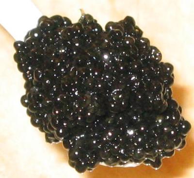 Classic Osetra Caviar, Sturgeon Caviar, Hackleback Caviar